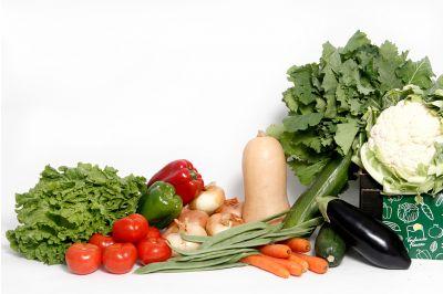 Solo verdura 10kg