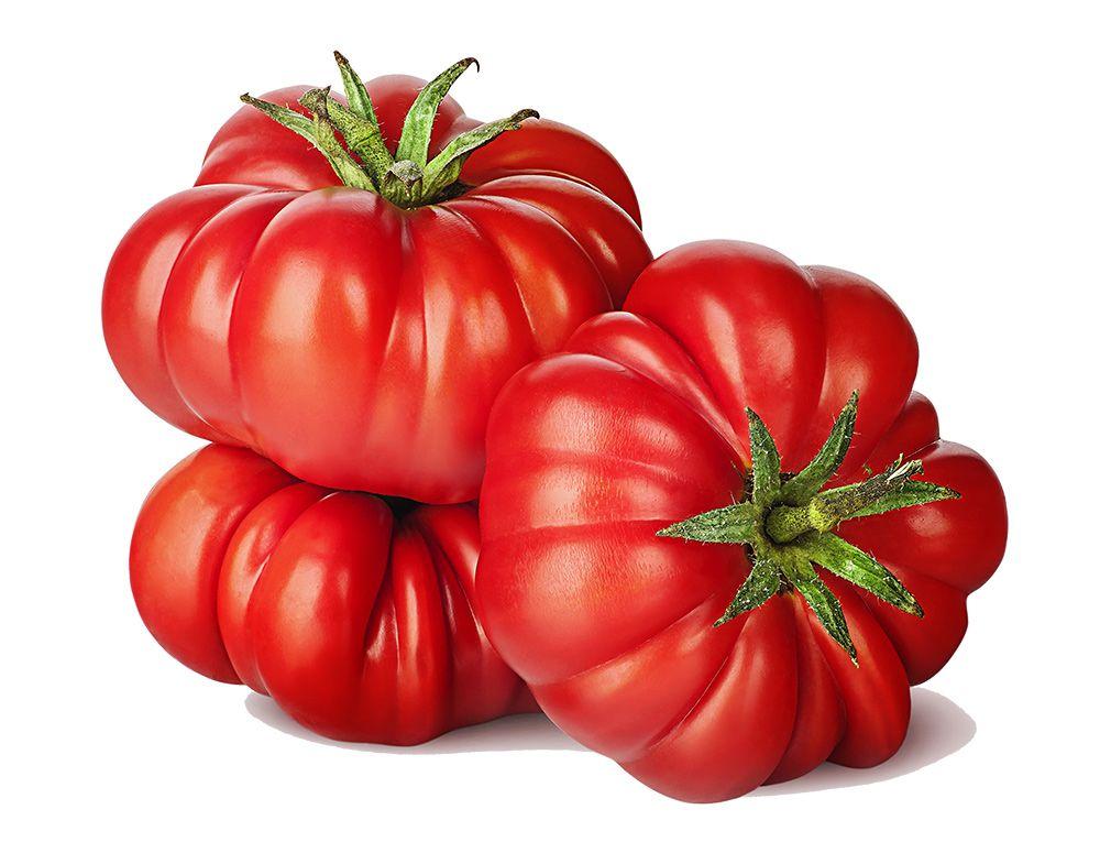 Uni Tomate Premium