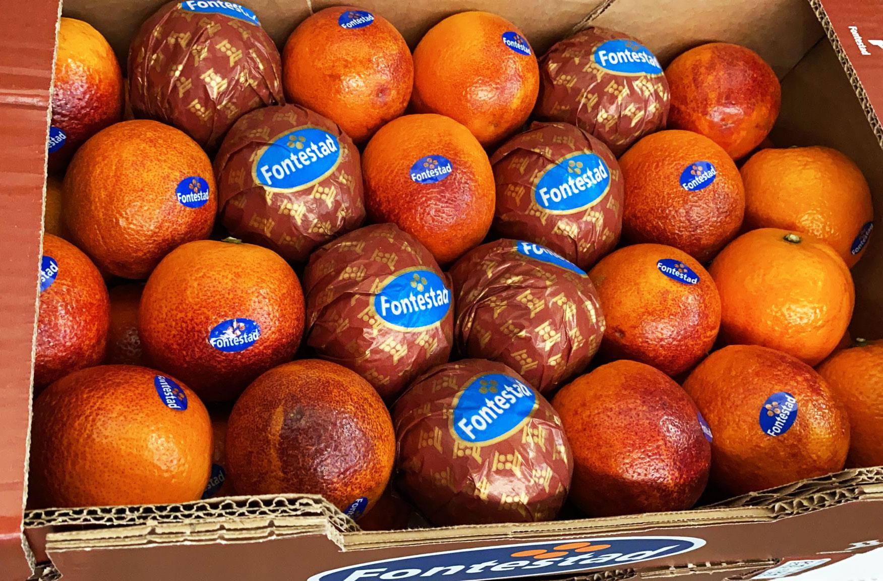 Disfruta de la Naranja Sanguina con esta receta de crema
